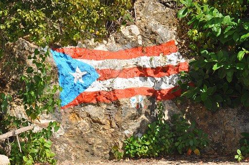Puerto Rico, Mountain, Rock Wall, Flag, Shrubs