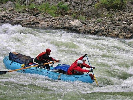 Rafting, Rapids, Paddle, Team, Focus, Fun, White Water