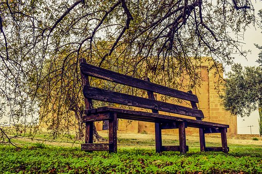 Bench, Park, Autumn, Park Bench, Garden, Peaceful
