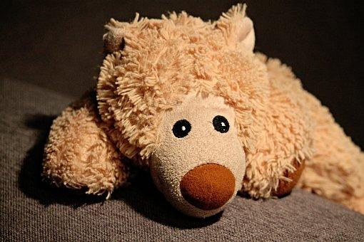 Stuffed Animal, Teddy Bear, Bear, Bears, Soft Toy, Cute