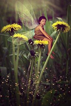 Magic, Story, Flower, Baby, Kid, Fantasy