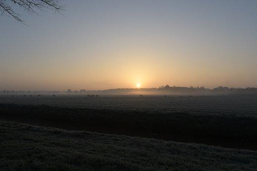 Light, Morning Light, Sunrise, Sun, Fog, Landscape