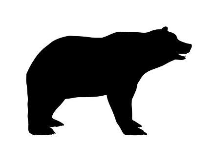 Bear, Large, Heavy, Mammal, Bruin, Boor, Ruffian