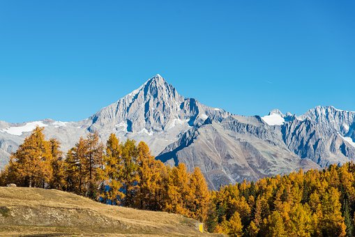 Nature, Alpine, Autumn Colours