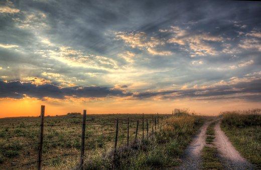 Path, Sunset, Nature, Walk, Sun, Sky, Trail