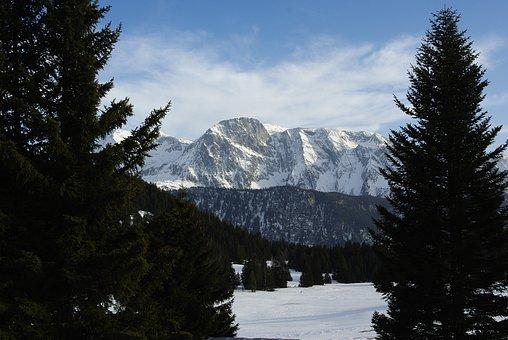 Alps, Chamrousse, The Nordic, Snow