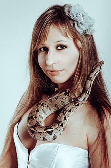 Python, Beautiful, With A Snake, Boa Constrictor, Snake