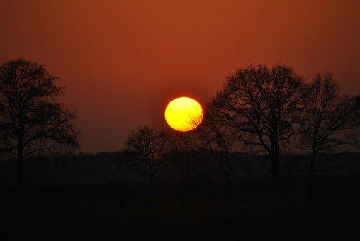 Sunset, Dawn, Tree, Dusk, Sun, Silhouette, Evening