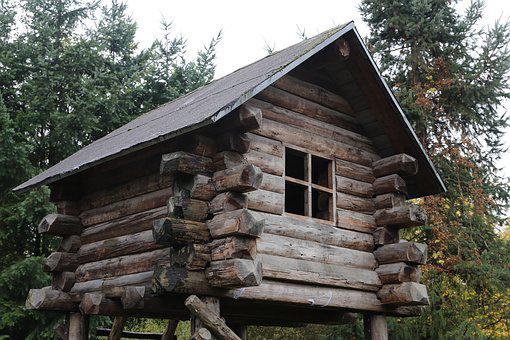 Tree House, Wood, Wooden, Nature, House, Home, Tree