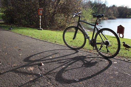 Bike, Sunny, Nature, Bicycles, Wheel, Lake, Away, More