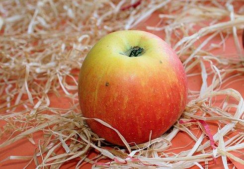 Apple, Fruit, Healthy Food, Fruit Growing, Autumn