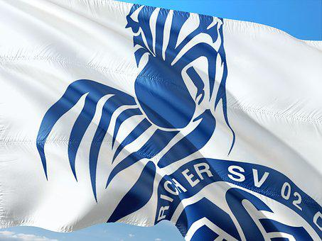 Flag, Logo, Football, 2, Bundesliga, Msv Duisburg