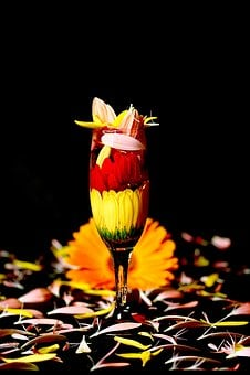 Flowers, Flower, Concept, Colors, Studio, Glass, Design