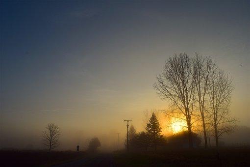 Sunrise, Fog, Trees, Sun, Sky, Silhouette, Foggy, Misty
