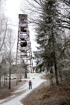 Winter, Snow, Cold, Forest, Up, Man, Tower, Building