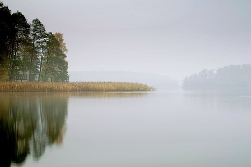 Lake, The Fog, Pond, Water, Morning, Dawn, Autumn