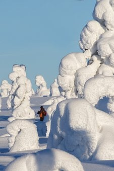 Lapland, Winter, Snow, Wintry, Finland, Cold, Snowy