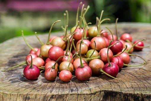 Cherry, Fruit, Fresh, Food, Berry, Sweet, Organic