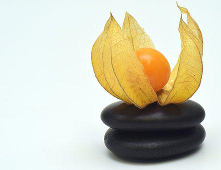 Physalis, Fruit, Berry, Orange, Food, Healthy, Vitamins