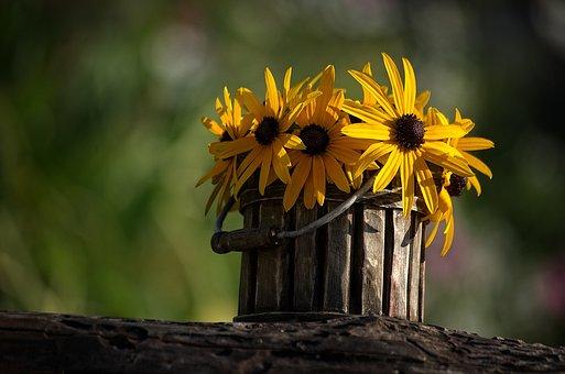 Flower, Pot, Pots, Plant, Flowerpot, Ceramic, Deco