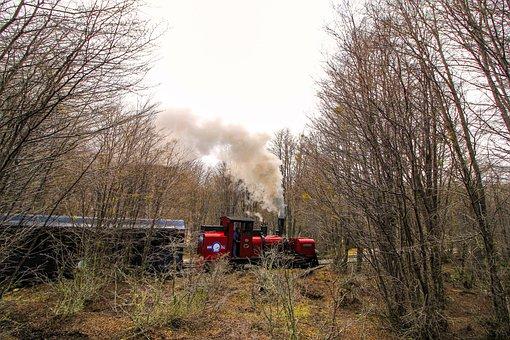 Train, Forest, Trees, Smoke, Nature, Lane, Rail, Trains