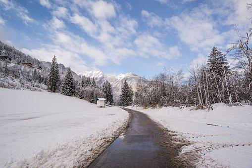 Road, Corner, Way, Asphalt, Street, Path, Trees, Winter