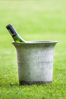 Wine On Ice, Ice Bucket, Wine Bottle, Frosted, Garden