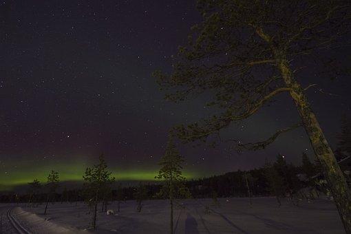 Lapland, Winter, Aurora, Aurora Borealis, Night