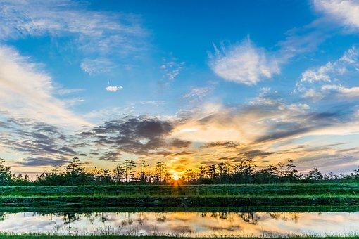 Sunset, Everglades, Landscape, Dawn, Sundown, Swamp