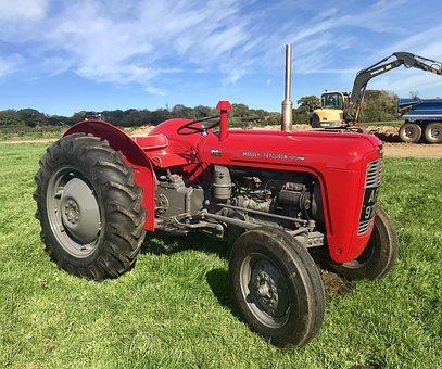 Tractor, Massey, Ferguson, Farm