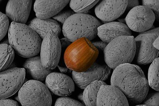Hazelnut, Almond, Noise Almond, Color Touch Effect