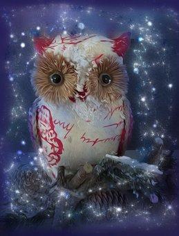 Christmas, Owl, Decoration, Festive, Christmas Card