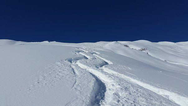 Skiing, Traces, Snow, Deep Snow, Powder Snow
