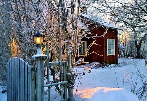 The Christmas Spirit, Lamp, Winter, Snow, Garden, Frost