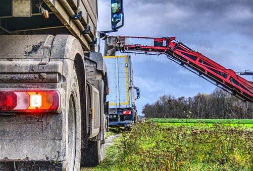 Harvest, Sugar Beet, Truck, Back Light, Brake Light