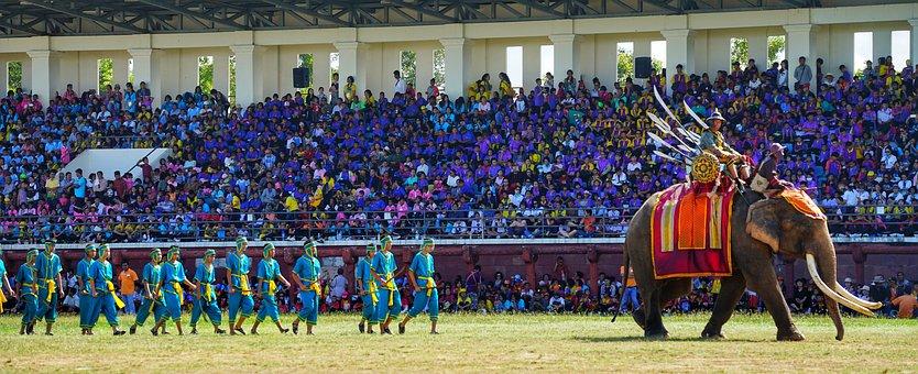 Elephant, Festival, Surin, Thailand, Show, Warriors