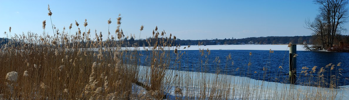 Winter, Lake, Wintry, Ice, Snow, Frozen, Winter Lake