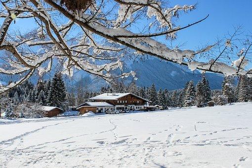 Alm, Alpine, Alpspitze, Trees, Bavaria, Mountains