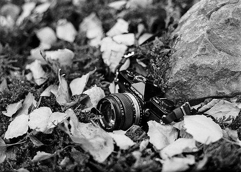 Film Camera, Camera, Vintage, Film, Photography