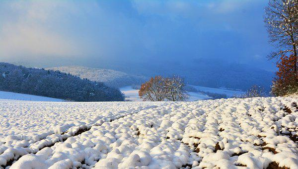 Winter, Wintry, Snow, Snowy, Landscape, Snow Landscape