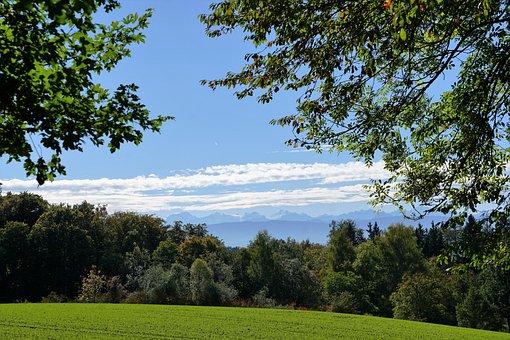 Meadow, Zollikon, Zurich, Canton, Switzerland, Nature