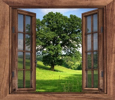 Window, View, Tree, Landscape, Season, Wooden, Natural