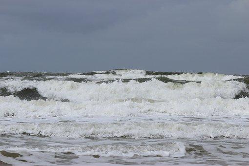 Wave, Surf, Wave Breaking, North Sea, Forward