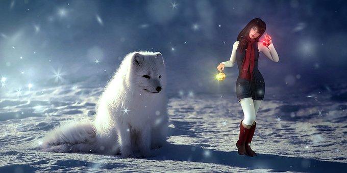 Fantasy, Winter, Snow, Dog, Girl, Sun