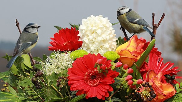Still Life, Bouquet Of Flowers - With - Blue Tits