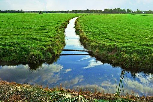Waterway, Grassy Banks, Meadows, Rural, Farmland