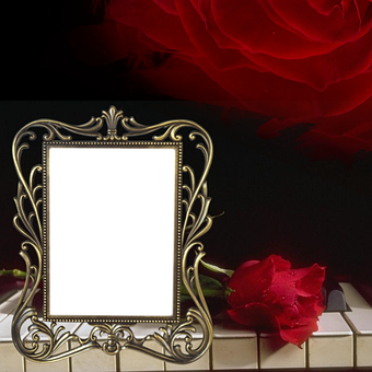 Scrapbook, Piano, Page, Red, Rose, Keys, Gold, Frame