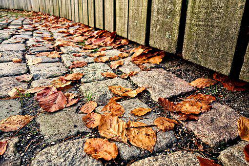 Cobbles, Stone, Path, Walkway, Leaves, Autumn Leaves