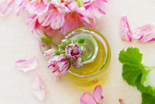 Oil, Geranium, Leaves, Flowers, Essential Oils