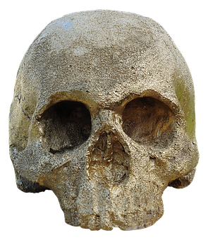 Skull And Crossbones, Golden Skull, Skull, Shiny